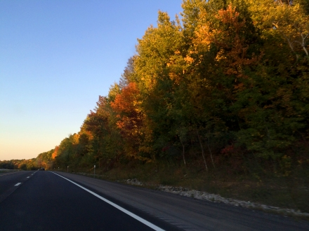 First glimpse of foliage on the final stretch home - upstate NY.